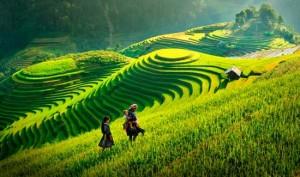 vietnam-y-camboya-de-sapa-a-siem-reap